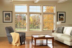 Ellison Windows